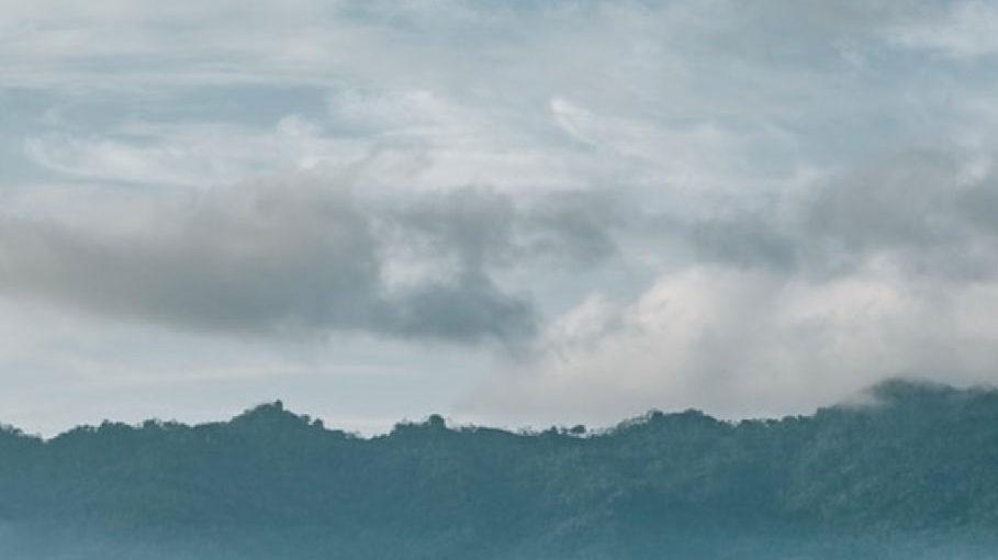 Vystavenie prízemnému ozónu ako výsledok znečistenia ovzdušia je spojené s obezitou a cukrovkou